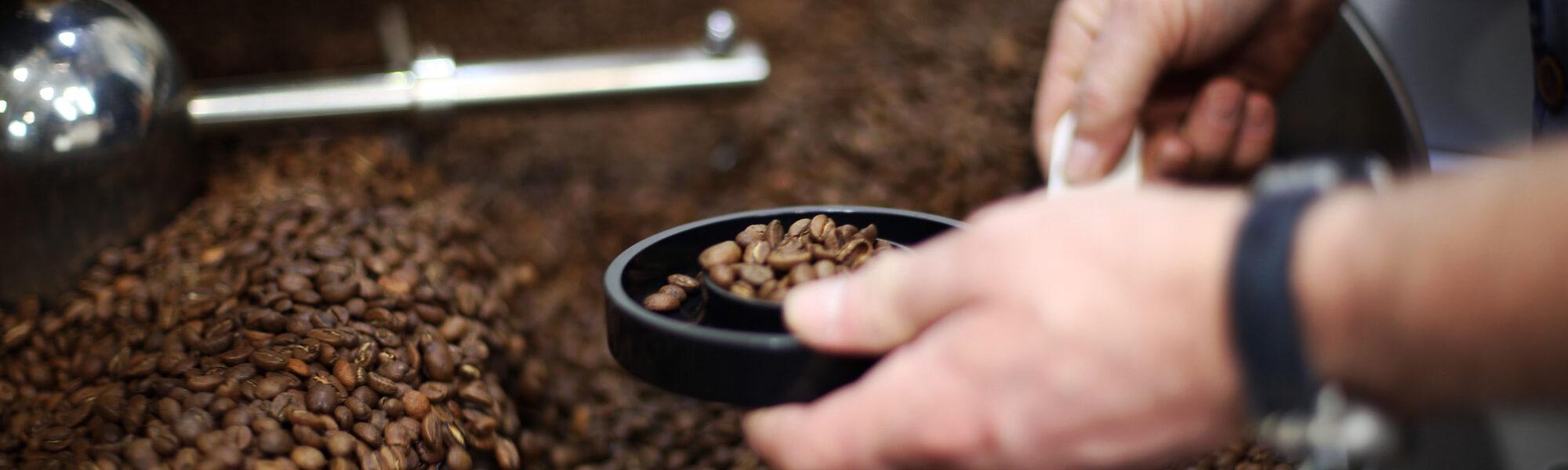 Hands on Coffee Roasting